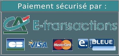 Logo paiement E-transaction Crédit Agricole